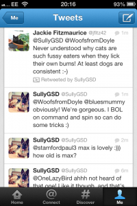 Example Sullys Tweets